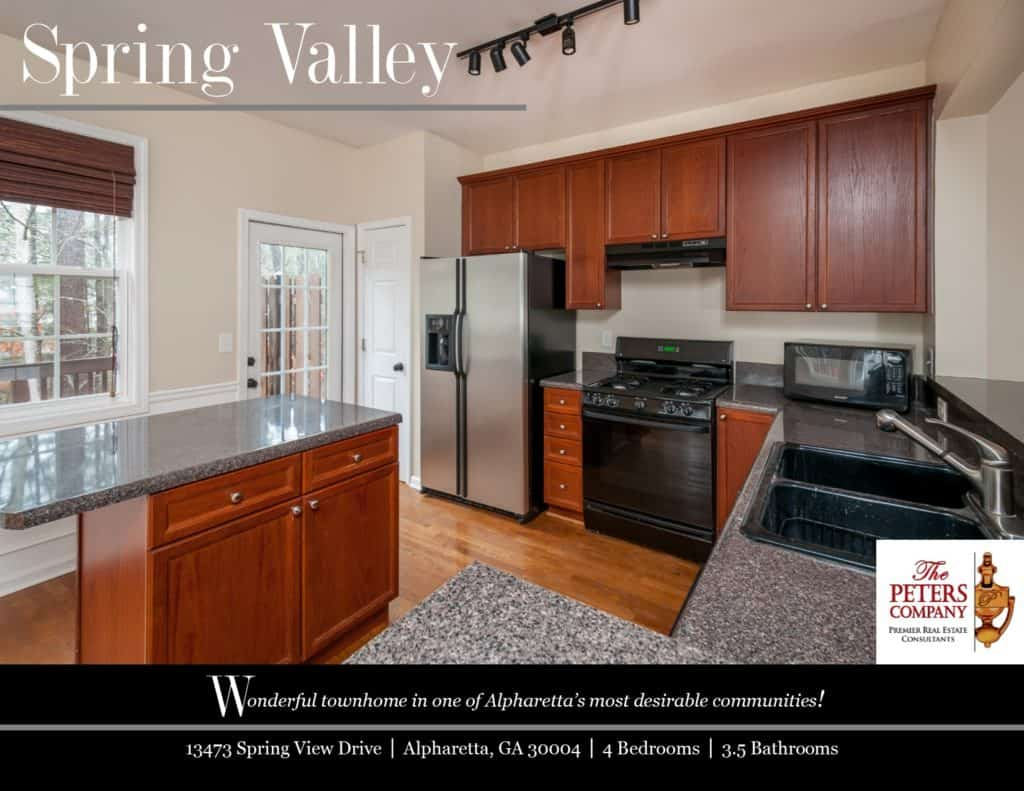 13473 Spring View Drive Flyer front